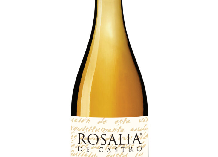 15-55-42-Rosalía-de-Castro